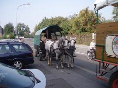 Planwagenfahrt021